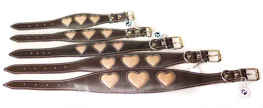 Italian Greyhound puppy collar size guide from Dog Moda
