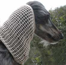Dog Moda crochet dog snood