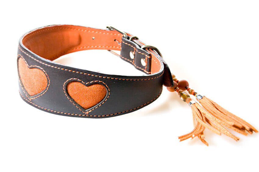 Sighthound collars with hearts for whippets, greyhounds, lurchers, hounds