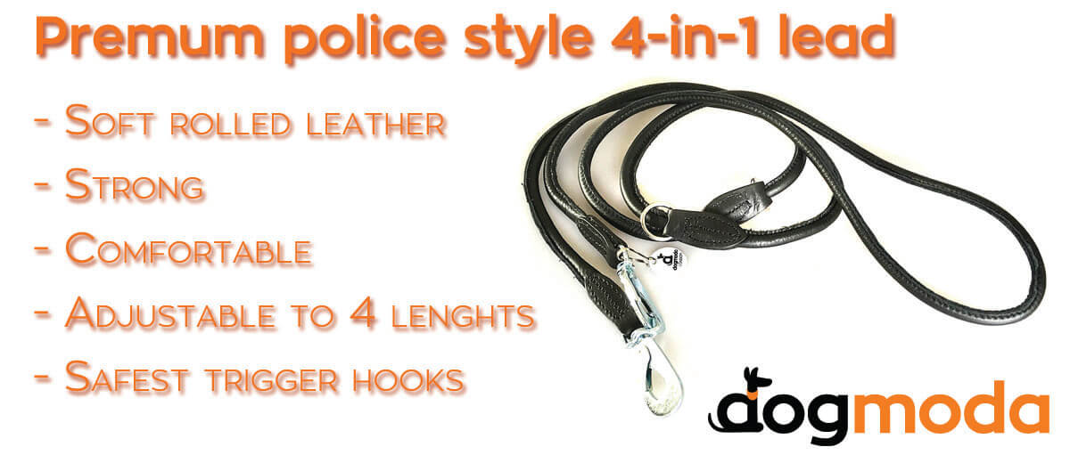 Training / Police style adjustable dog leads