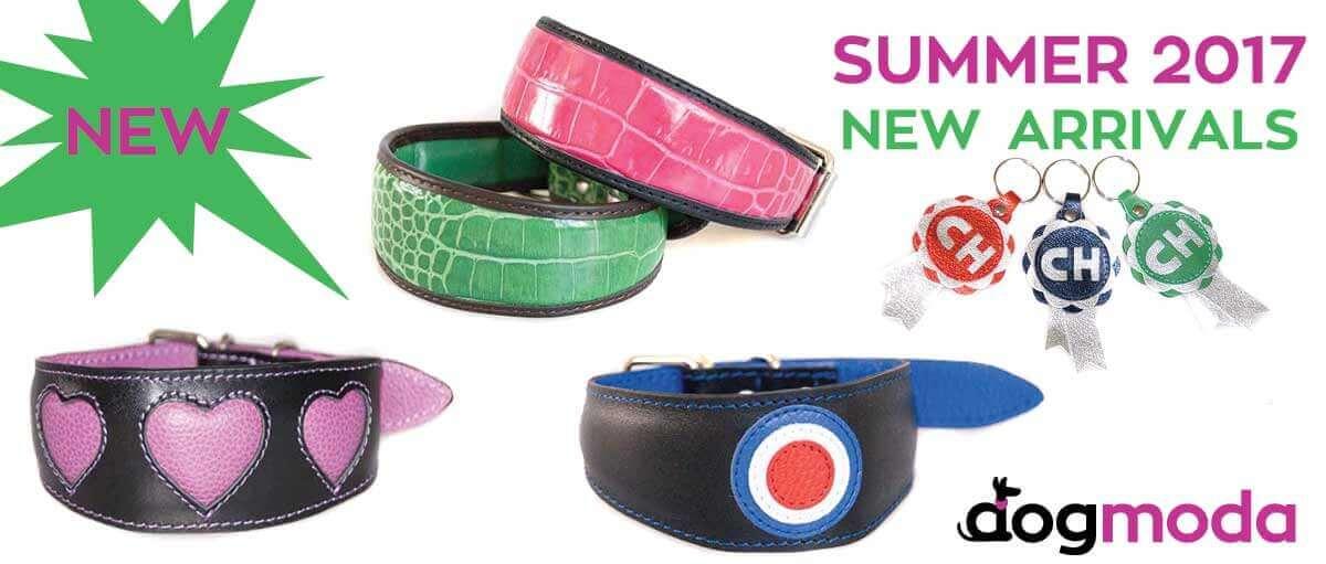 New whippet collars - summer 2017