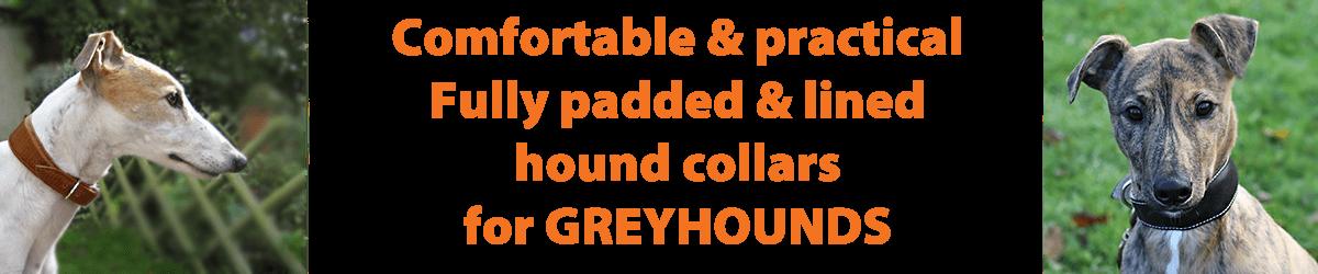 greyhound collars from Dog Moda