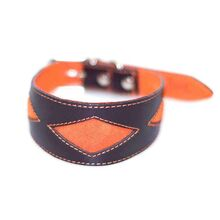 Brown leather hound collar with orange rhombi