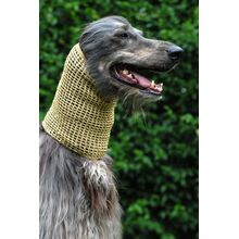 Crochet metallic snood in gold modelled by Dog Moda's own Head of Security Kazbek