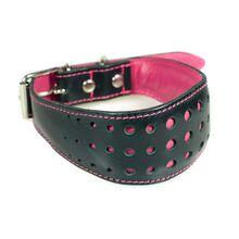 Elegant fuchsia pink hound collar