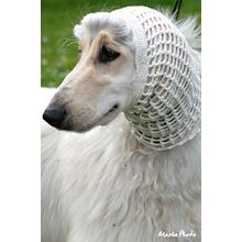 White domino Afghan Hound in colour coordinated crochet cotton snood