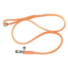 Orange rolled leather dog lead