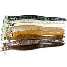 Safari range of snake imitation leather collars
