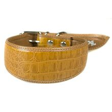 Jackal brown leather hound collar