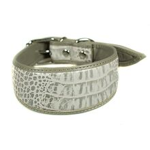 Silver grey leather hound collar