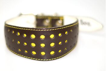 Elegant Yellow Daisy collar
