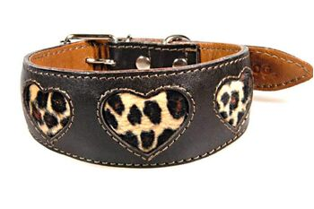 Soft padded brown leather hound collar with gold leopard hearts