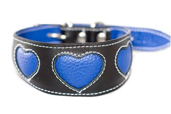 Blue hearts sightound collar