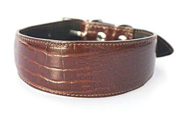 Amazonian alligator hound collar - Dark brown crocodile leather collar