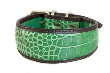 Green crocodile leather whippet collar