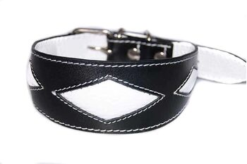 White rhombi hound collar is a popular choice for male sighthound