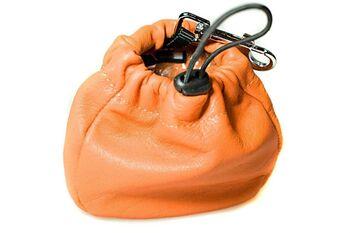 Dog training orange leather clip-on treat bag