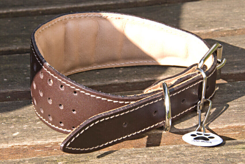 Elegant Brown orchid collar - fully padded and lined