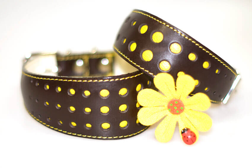 Elegant Yellow Daisy in size M and size S