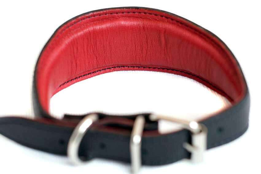 All Dog Moda hound collars are fully padded and lined with soft leather