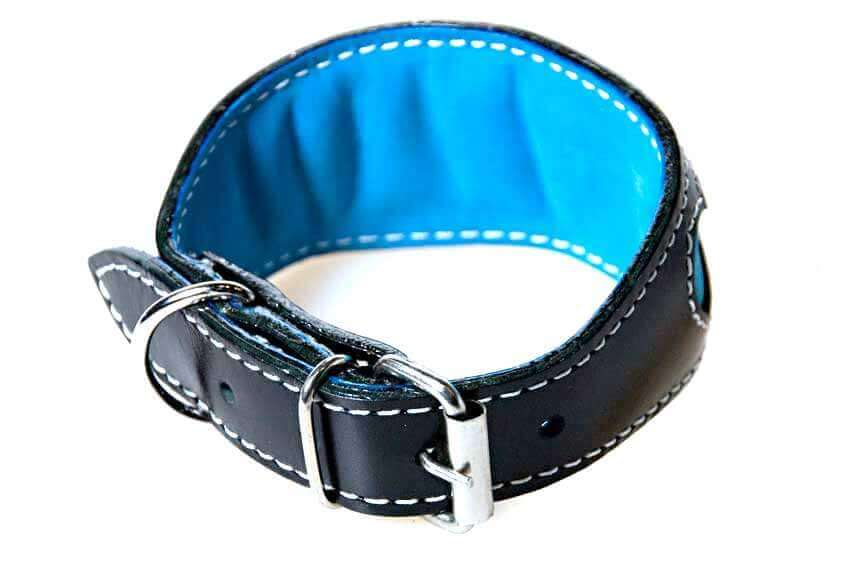 Full turquoise lining and soft padding