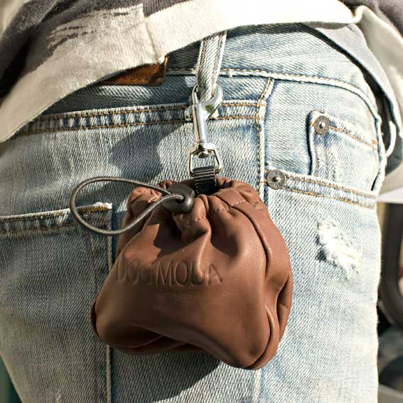 Leather clip-on treat bag for dog training