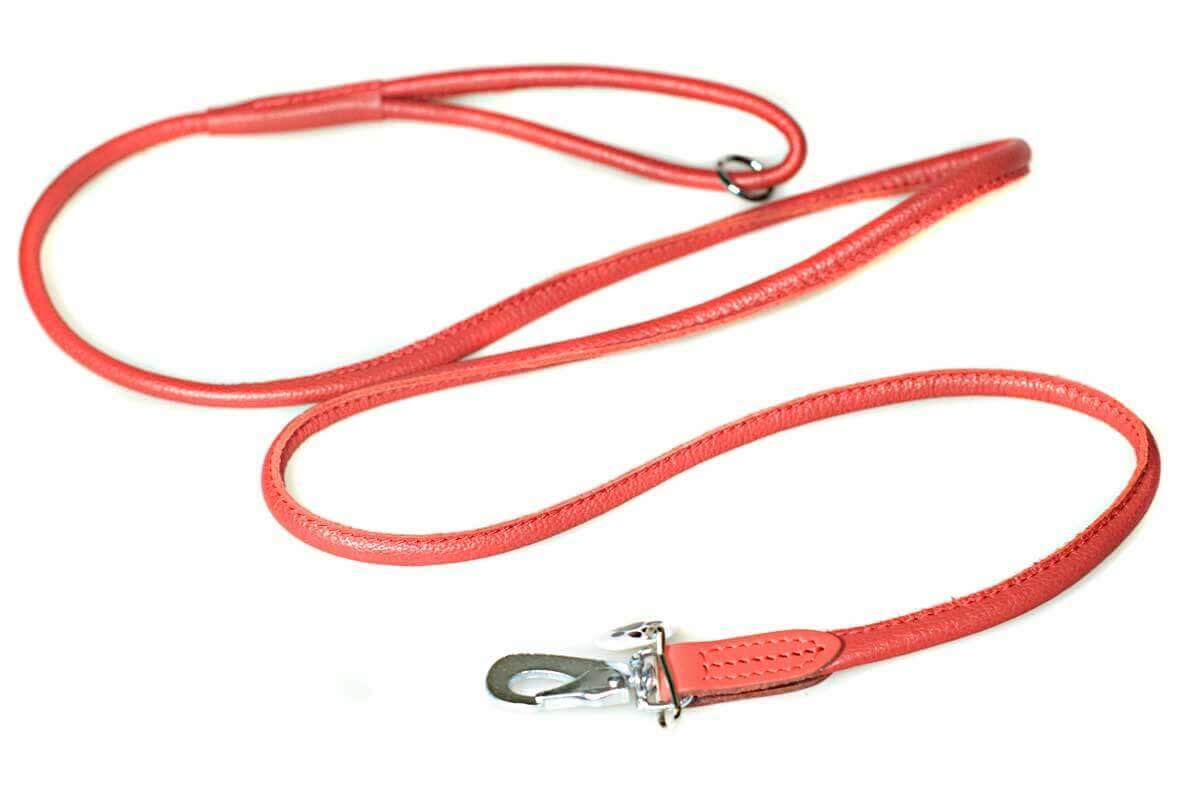 Matching premium rolled red leather lead
