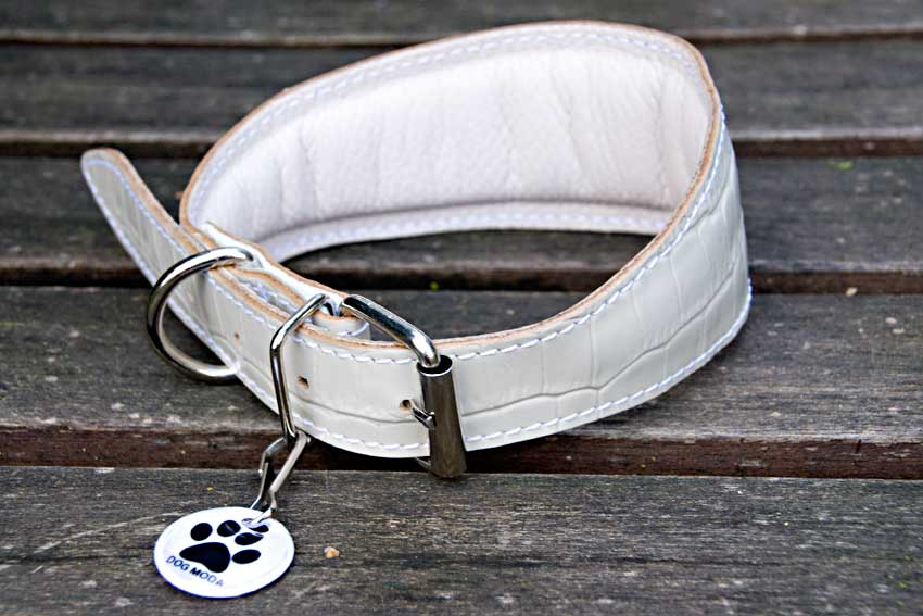 White reptile leather padded collar for Whippet