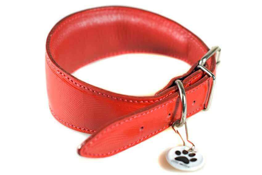Traditional handmade red leather with black edge piping sighthound collars from Dog Moda are soft and fully padded