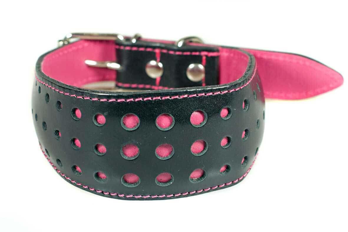 Elegant fuchsia pink whippet collar