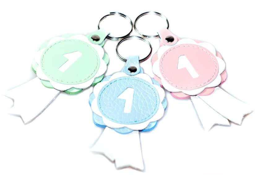 Pastel winner show rosette key rings