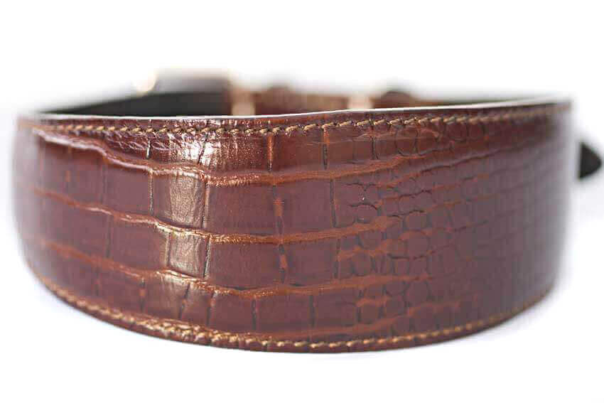 Amazonian alligator hound leather collar - Dark brown crocodile collar