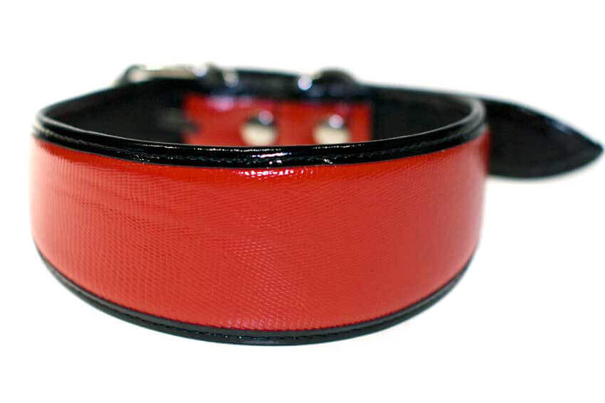Traditional handmade red leather with black edge piping sighthound collar