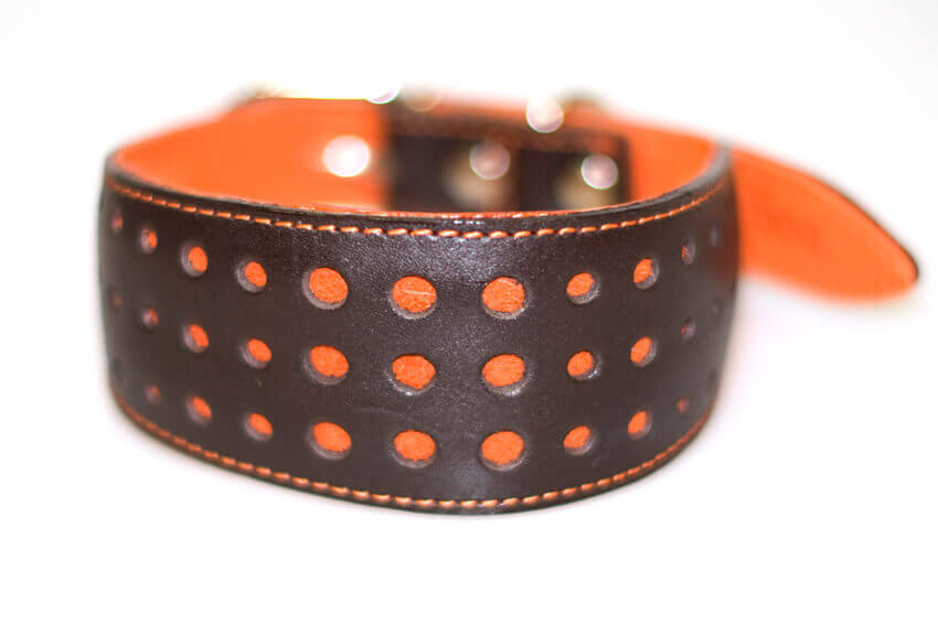 Elegant orange sighthond collar