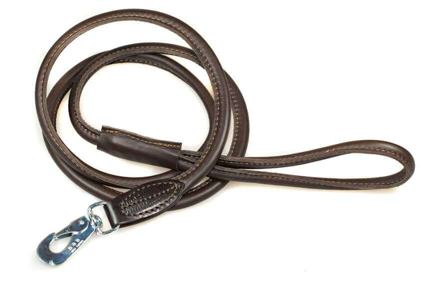 Rolled brown lead to match sky blue hearts hound collar