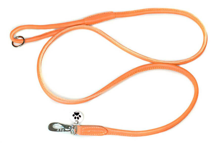 Orange rolled leather dog lead