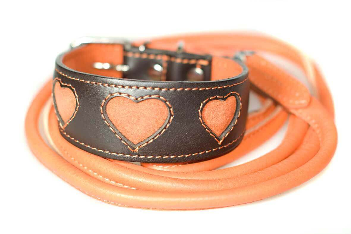 Orange hearts collar with orange rolled leather lead