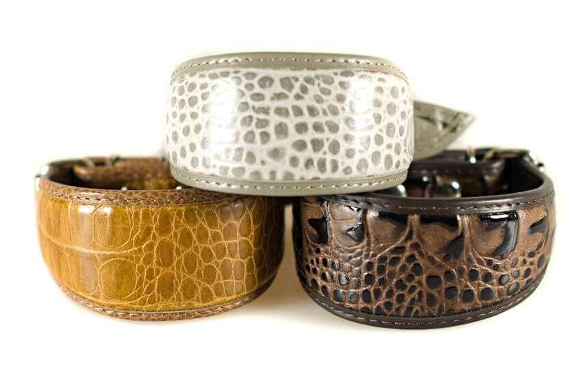 Italian Greyhound snake skin imitation collars by Dog Moda