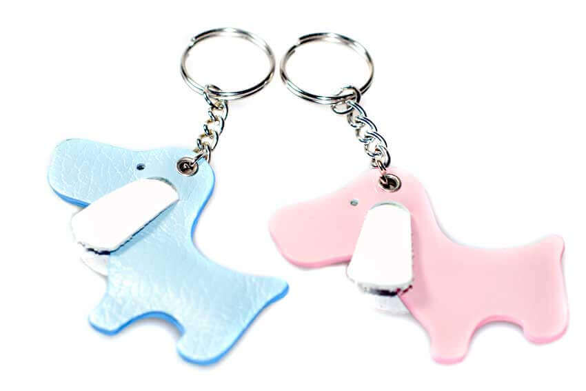 Blue and pink leather dog key chains