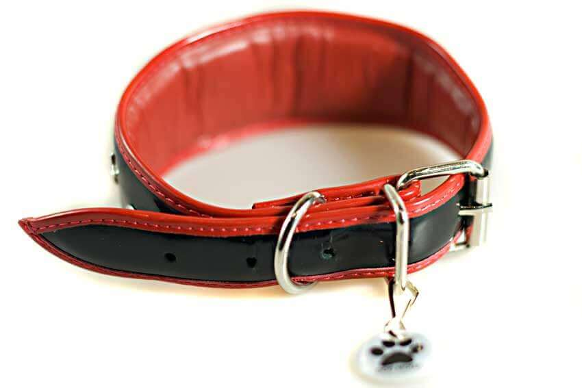 All Dog Moda collars are fully lined and padded for your hound's total comfort