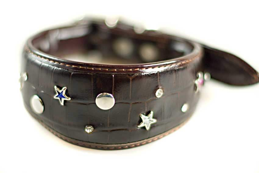 Brown stars leather glamour hound collar