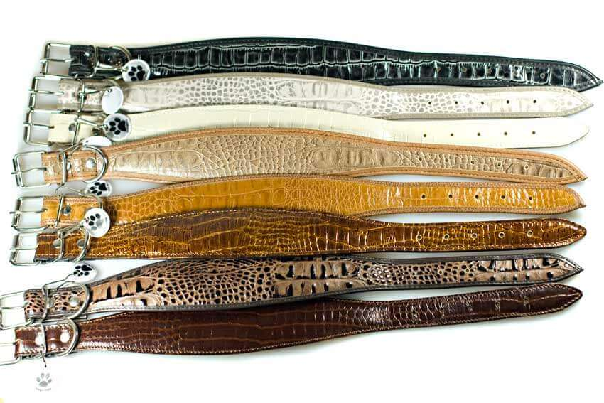 Whippet collars - Traditional handmade soft leather padded collars for whippets
