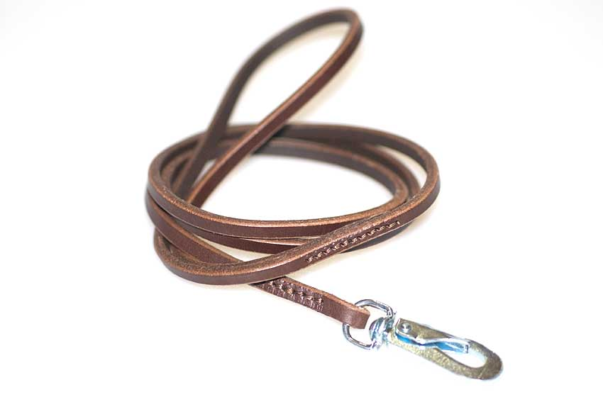 Brown dog show leather lead