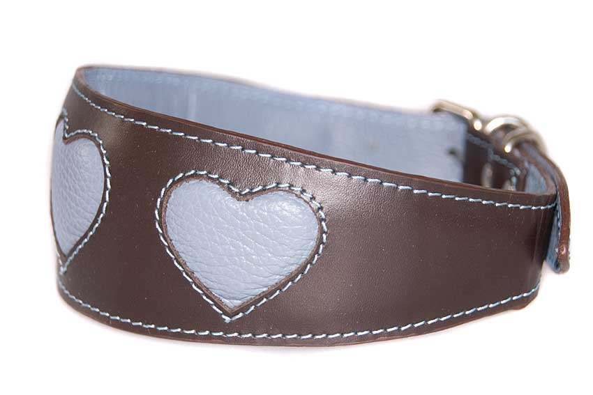 Sky blue hearts sighthound collar with matching leather lining and padding