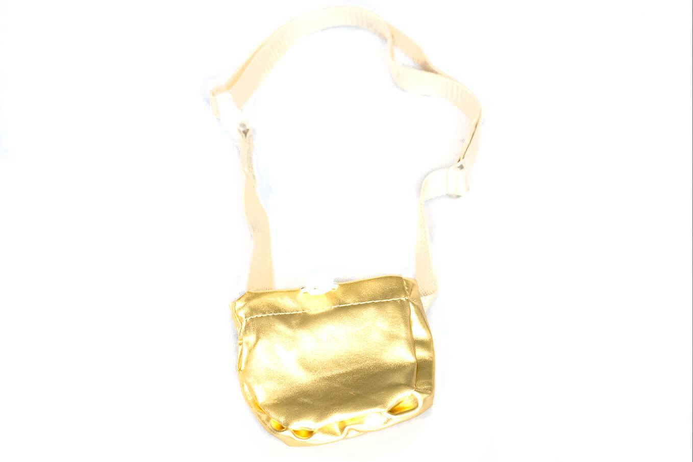 Dog training gold treat bag with adjustable belt