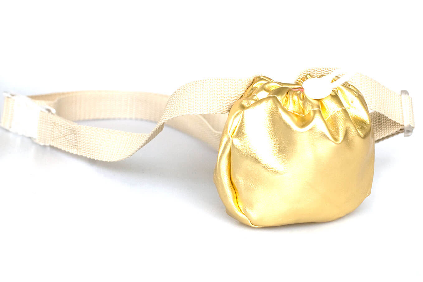 Dog training treat bag with adjustable belt in gold