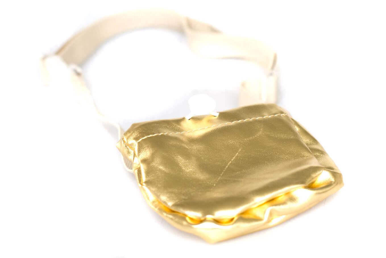 Dog training treat bag with adjustable belt in gold