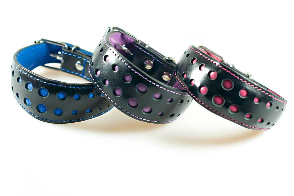 Elegant collars size S