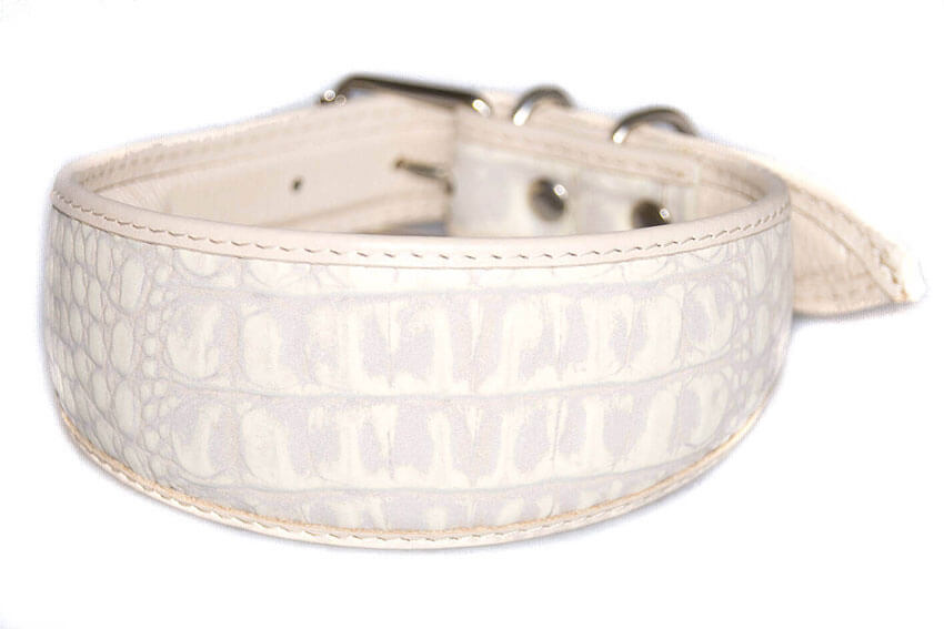 White arctic fox leather hound collar