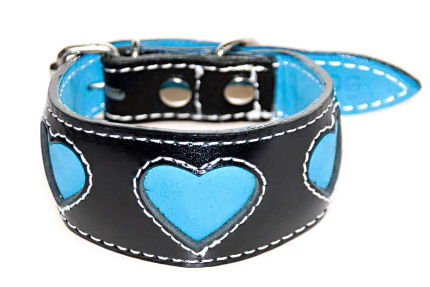 Blue Hearts Whippet puppy collar